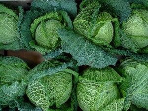 Cabbages and Kings and Other Distracting Things