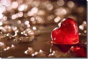Heart by seyed mostafa zamani via Flickr.